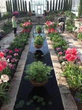 como sunken garden