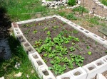 Polyculture bed