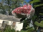 Sunflower in the bag