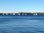 Sailboats on Lake Minnetonka